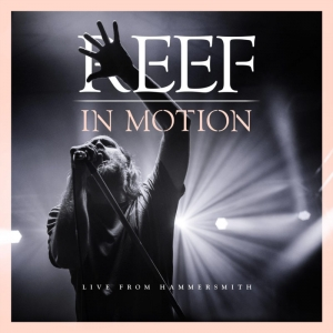 Reef - In Motion