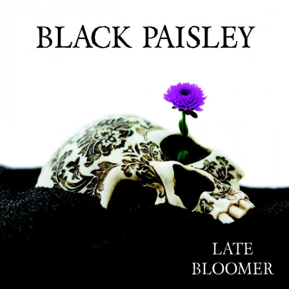 Black Paisley - Late Bloomer -