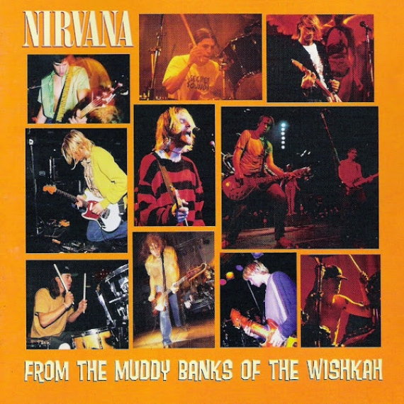 Nirvana - From the Muddy Banks of the Wishkah -
